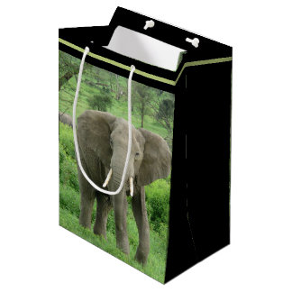 Elephant Near Ndutu Medium Gift Bag