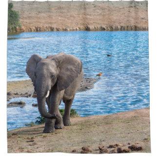 Elephant on the lake shower curtain