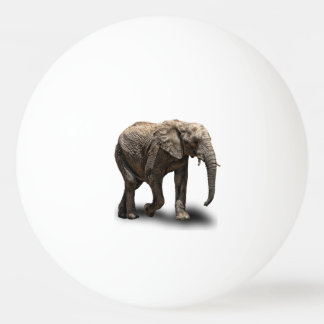 ELEPHANT PING PONG BALL