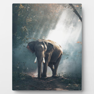 elephant plaque