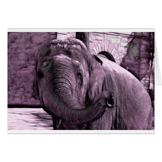 Elephant Pointing Forward with the Trunk Sketch Card