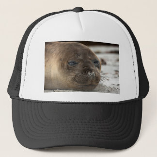 Elephant Seal pup Trucker Hat