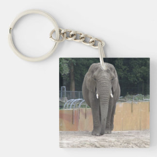 Elephant Single-Sided Square Acrylic Key Ring