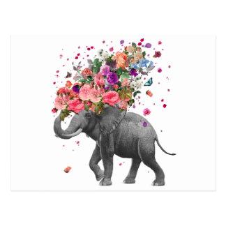 Elephant Splash Postcard