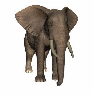 Elephant Standing Photo Sculpture