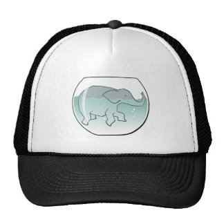Elephant Swimming around in Goldfish Bowl Cap