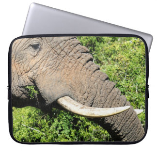 Elephant Tusks Computer Sleeves