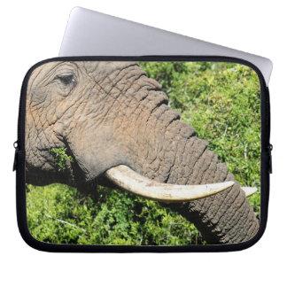 Elephant Tusks Laptop Sleeve