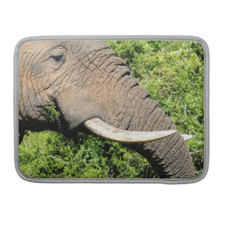 Elephant Tusks Sleeves For MacBook Pro