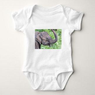 Elephant, Udawalawe, Sri Lanka Baby Bodysuit