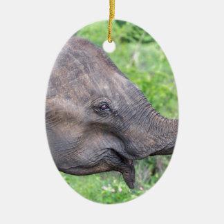 Elephant, Udawalawe, Sri Lanka Ceramic Oval Decoration