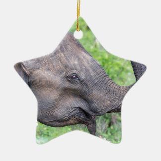 Elephant, Udawalawe, Sri Lanka Ceramic Star Decoration