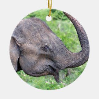 Elephant, Udawalawe, Sri Lanka Round Ceramic Decoration
