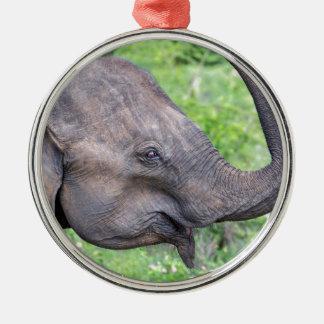 Elephant, Udawalawe, Sri Lanka Silver-Colored Round Decoration