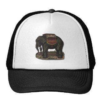Elephant Vintage Jumbo Card Cutout Mesh Hat