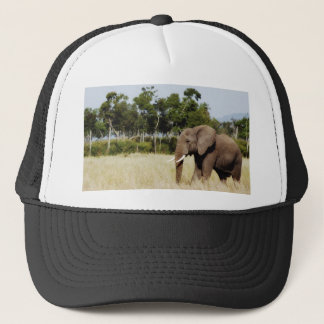 Elephant walking Masai Mara Plains Kenya hat