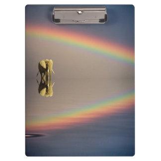 Elephant, water, and rainbow, Kenya Clipboards