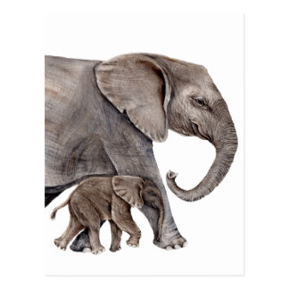 Elephant with Baby Elephant Postcard