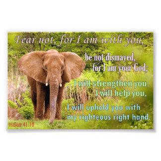 Elephant with Isaiah 41:10 Photo Art