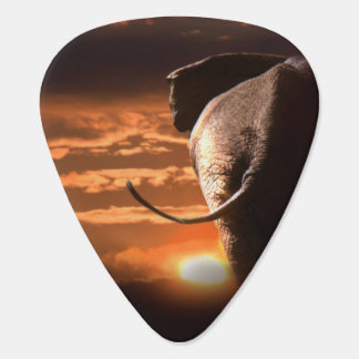 Elephant with Sunset Plectrum