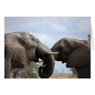 Elephants At Kruger Card