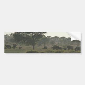 Elephants Bumper Sticker African Safari Collection