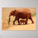 Elephants in Kenya Afdruk