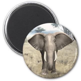 Elephants on the Savanna Magnet