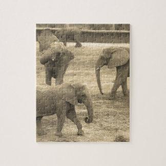 Elephants Puzzle - by Fern Savannah