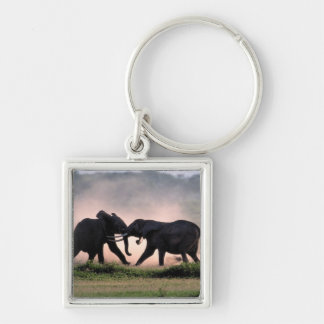 Elephants. Silver-Colored Square Key Ring