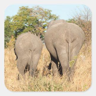 Elephants Walking Away Square Sticker