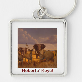Elephants!  wildlife! Silver-Colored square key ring