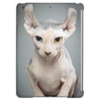 Elf Sphinx Cat Photograph Image