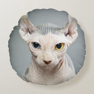 Elf Sphinx Cat Photograph Image Round Cushion