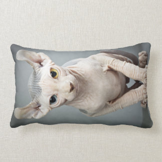 Elf Sphinx Cat Photograph Lumbar Pillow