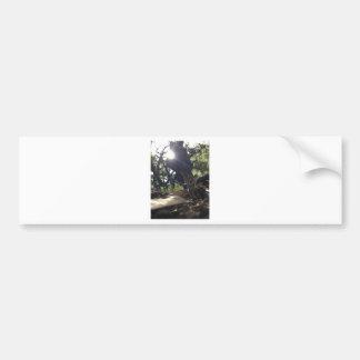 Elfin Saddle Mushroom Bumper Sticker