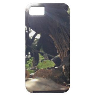 Elfin Saddle Mushroom iPhone 5 Cover