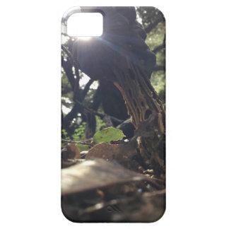 Elfin Saddle Mushroom iPhone 5 Covers