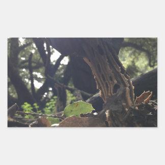 Elfin Saddle Mushroom Rectangular Sticker