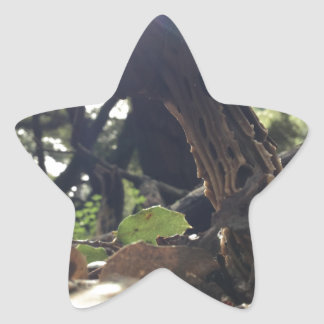 Elfin Saddle Mushroom Star Sticker