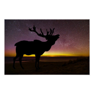 Elk And Aurora Borealis Poster