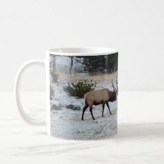Elk at Estes park Basic White Mug