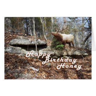Elk Birthday card