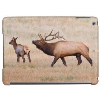 Elk (Cervus Elephus) Bull Herding Harem 2 Case For iPad Air