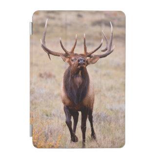 Elk (Cervus Elephus) Bull Herding Harem iPad Mini Cover