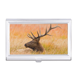 Elk (Cervus Elephus) Resting In Meadow Grass Business Card Cases