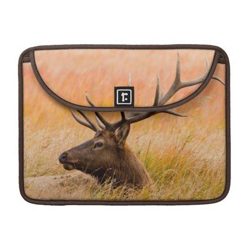 Elk (Cervus Elephus) Resting In Meadow Grass Sleeve For MacBook Pro