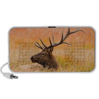 Elk (Cervus Elephus) Resting In Meadow Grass Portable Speakers