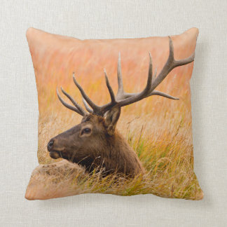 Elk (Cervus Elephus) Resting In Meadow Grass Throw Cushions