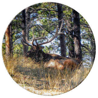 Elk Decorative Porcelain Plate
